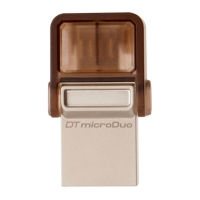 USB накопитель Kingston DataTraveler microDuo 64GB Chocolate